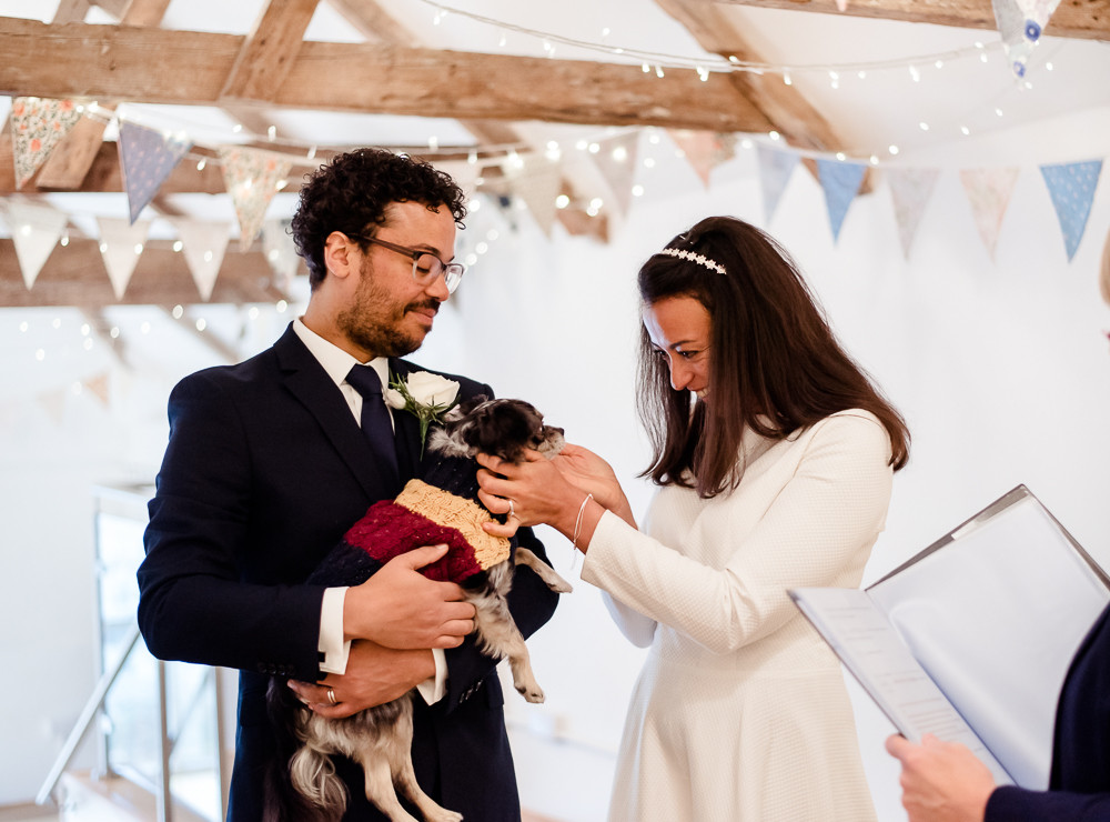 Dog at wedding ceremony, Cornwall