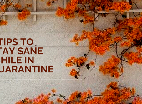 4 Tips to Stay Sane While in Quarantine!