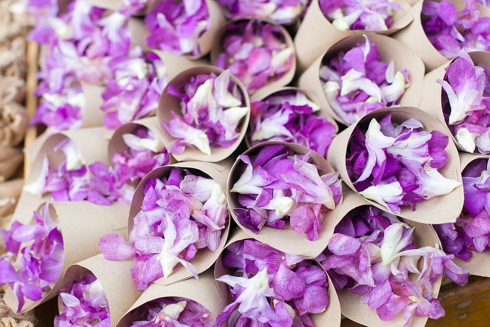 Beautiful Purple Thai Orchid Flower Petals