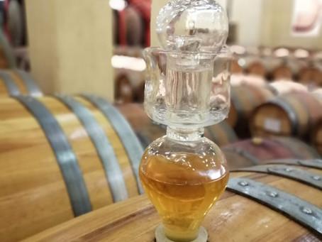 Op bezoek bij de wijnproducent