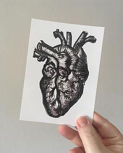 __New postcard__ Yay or nay 🤔__#anatomi
