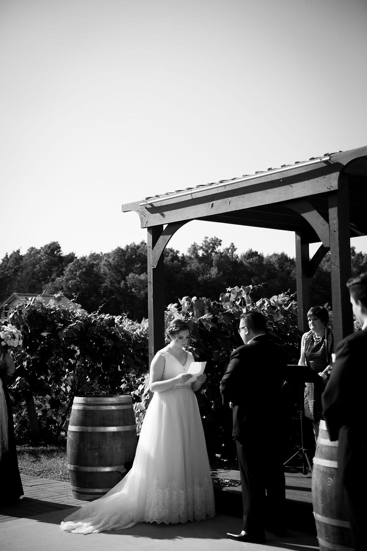 Becker Farms Vizcarra Vineyards Gasport NY intimate wedding elopement ceremony