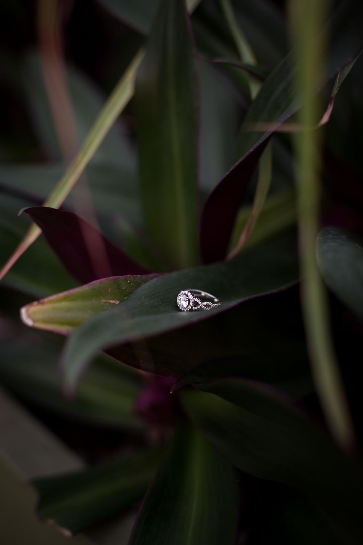 diamond engagement ring with botanical greenery