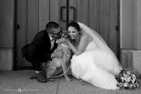 bride and groom with dog at Frank Lloyd Wright Boat House in Buffalo NY