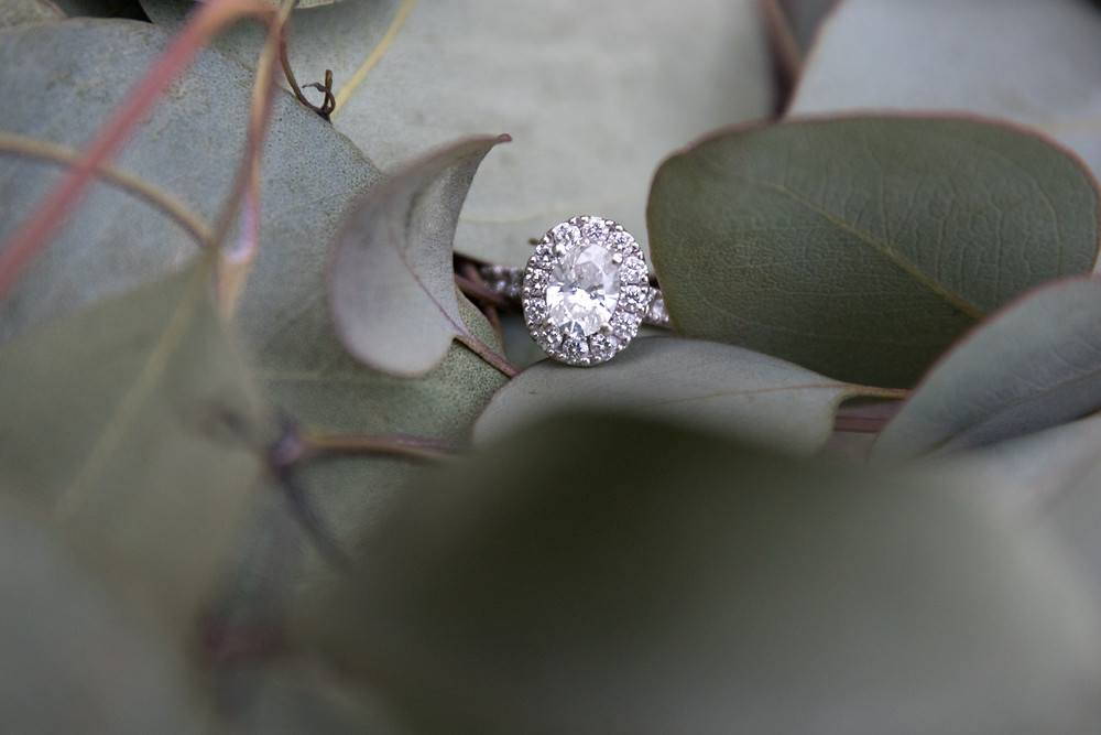 Knox Farm East Aurora NY Engagement Ring Photography