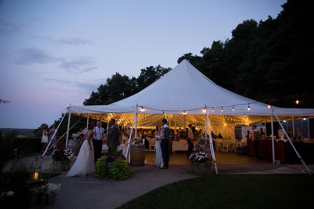 wedding reception dancing Heron Hill Winery Keuka Finger Lakes NY