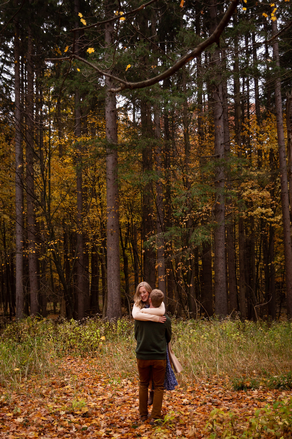 letchworth state park fall engagement photo
