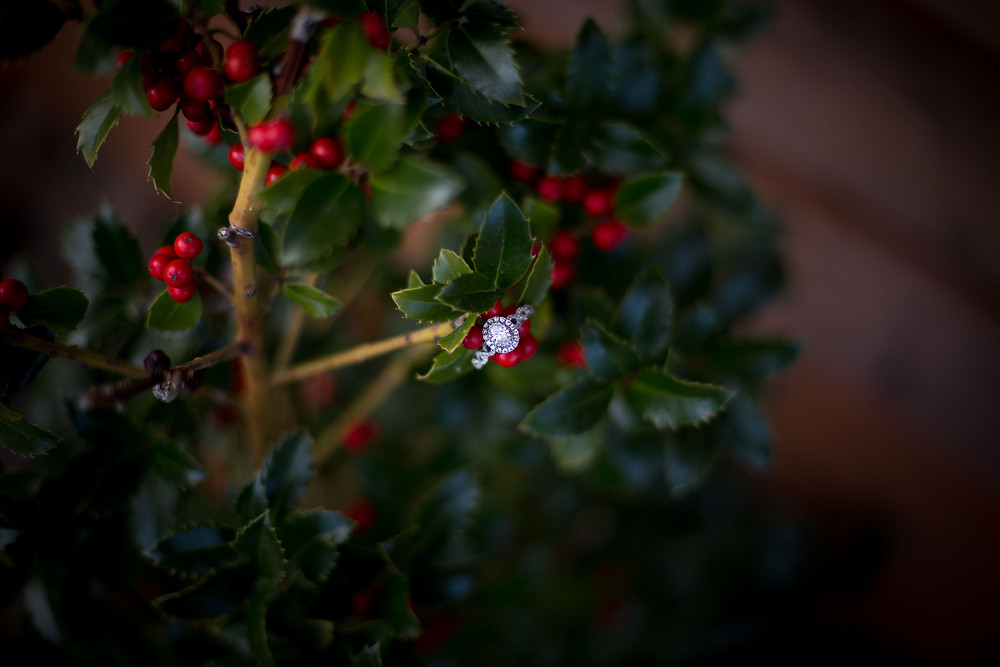 diamond engagement ring on green bush with red berries