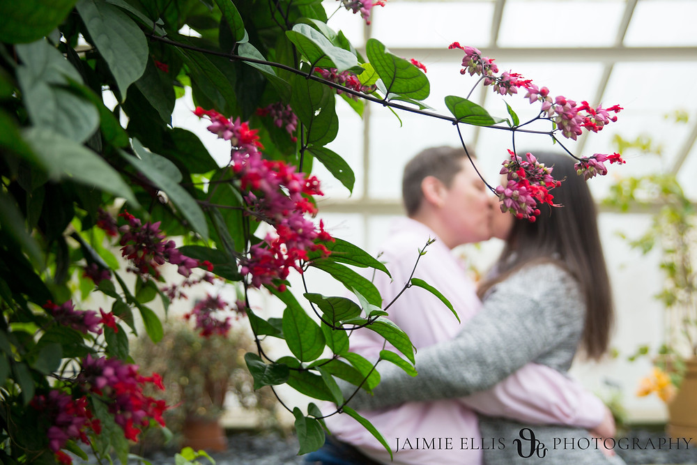 LGBTQ same sex couple inside the Botanical Gardens in Buffalo NY for their engagement session