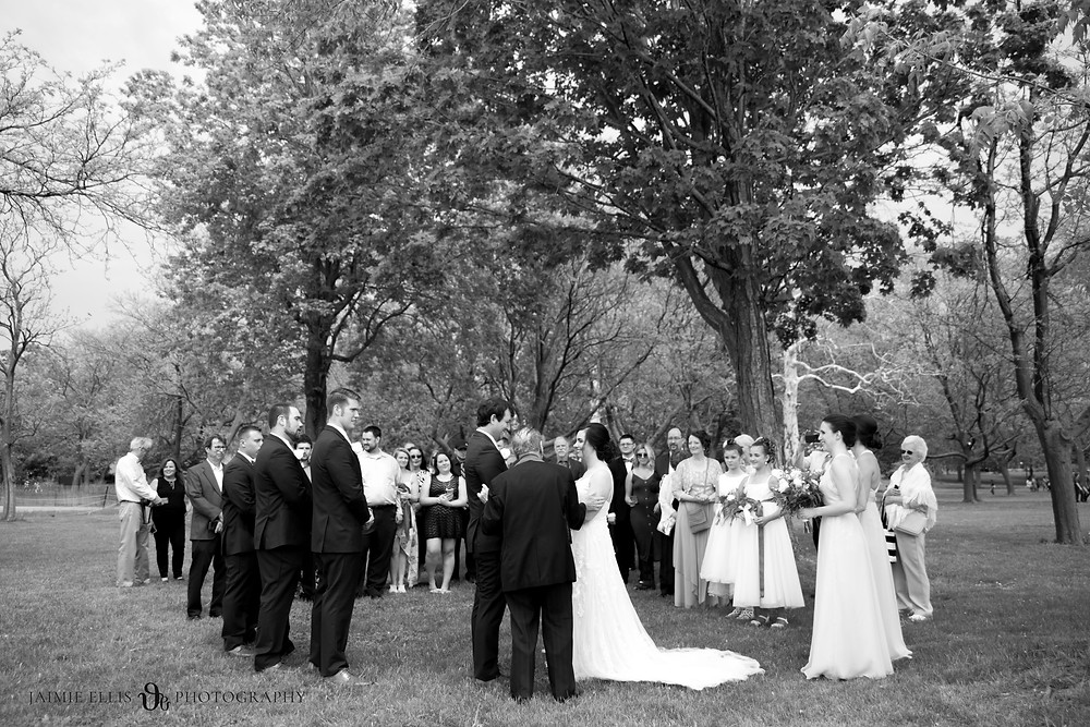 intimate wedding ceremony photo at Niagara Falls State Park NY USA