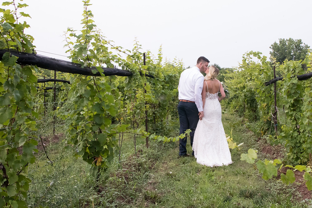 Spring Lake Winery Wedding Lockport Bride Groom Photo Portrait Bridal Session WNY Top 10 Venue