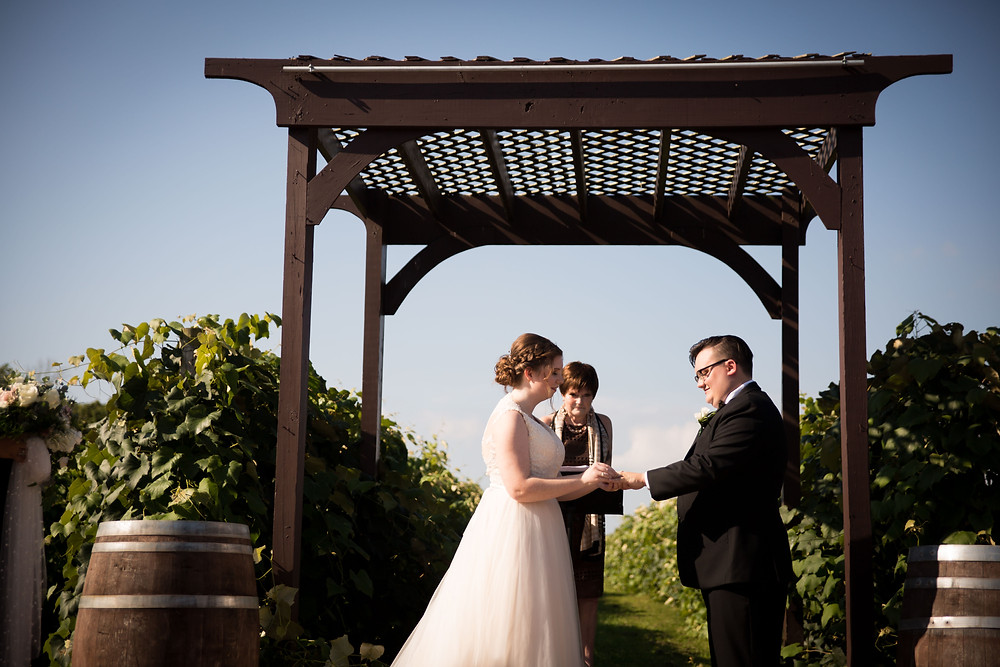 Becker Farms Vizcarra Vineyards Gasport NY intimate wedding elopement ceremony