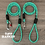 Helix DNA climbing rope dog leash