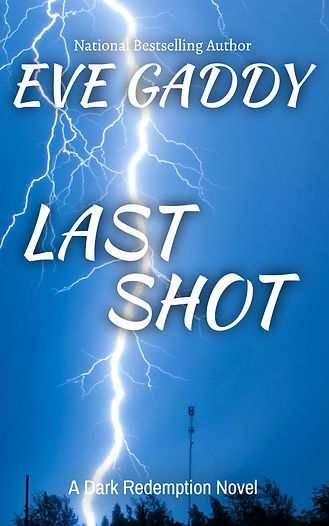 Newest Last Shot ecover.jpg
