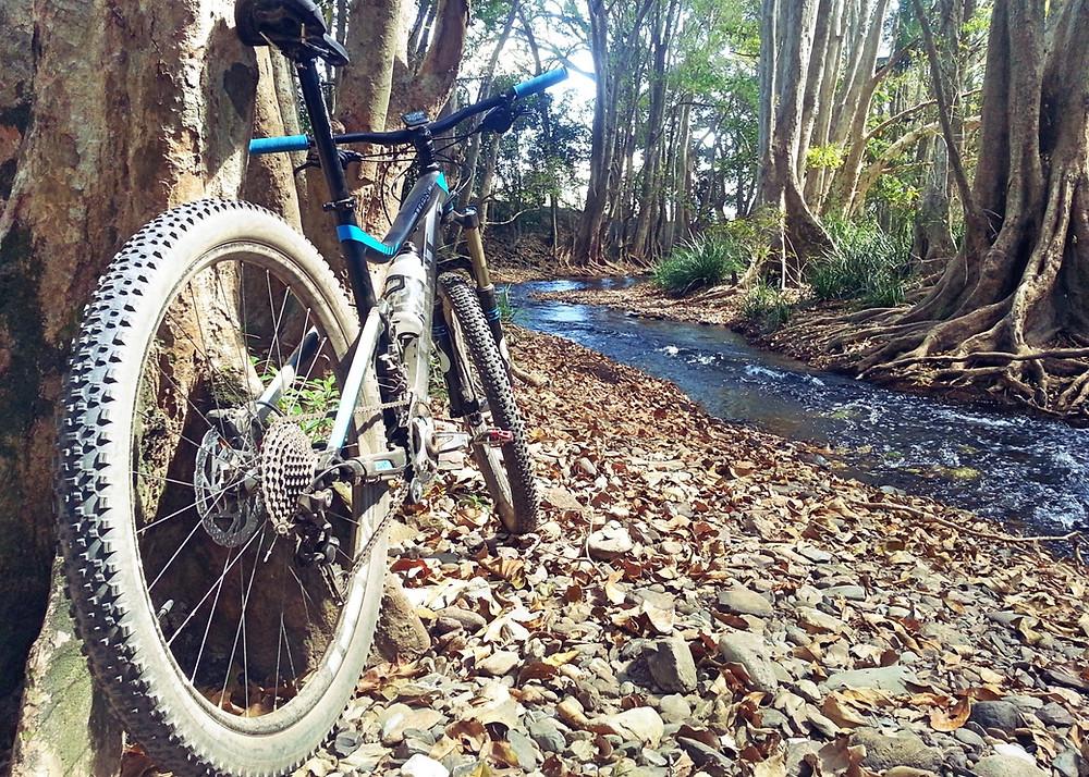 Crystal Creek, Cairns