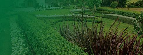 smart-garden-auckland-garden-maintenance
