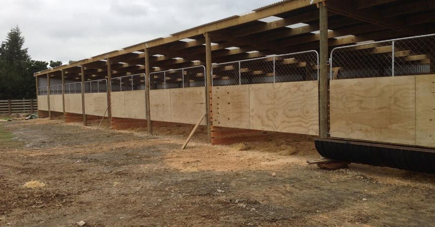 completed farm buildings bayphil.jpg