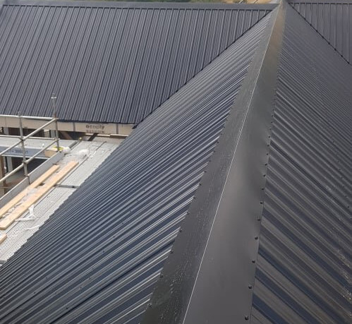 new roof on home bayphil.jpg
