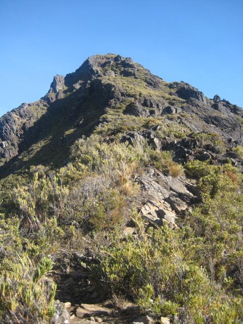 The peak ahead