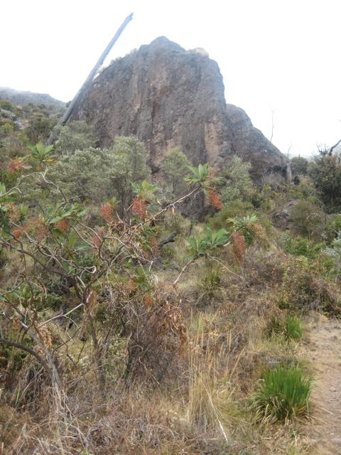 Crestones cliffs