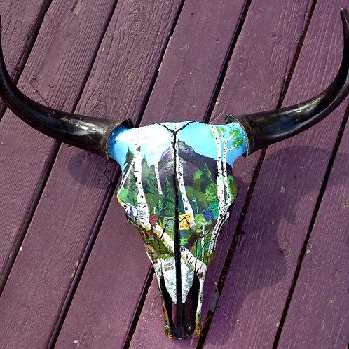 Painted Yak Skull