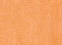 ORGANZA_swatch_orange.jpg
