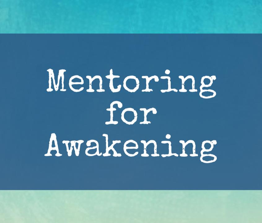 Mentoring for Awakening still  Flag