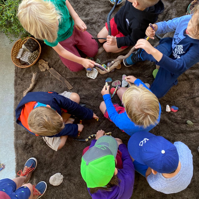 Snake Provocation in the outdoor classroom