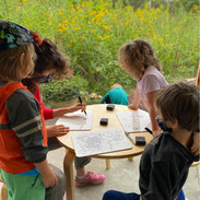 Drawing in the outdoor classroom