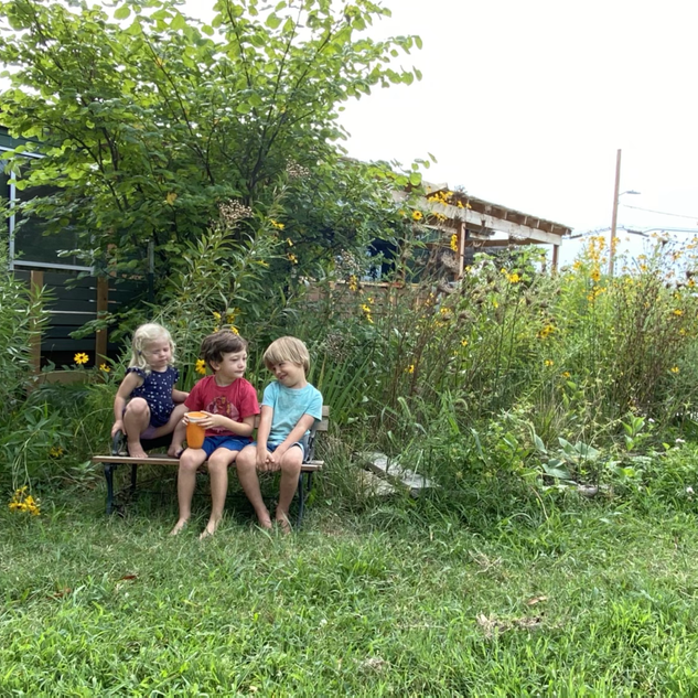 Naomi, Elon, and Odin having a chat by the garden