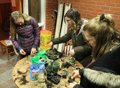 Gnomes in Homes- plants and ceramics promoting well being during the winter