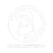plain_logo_transp2.png