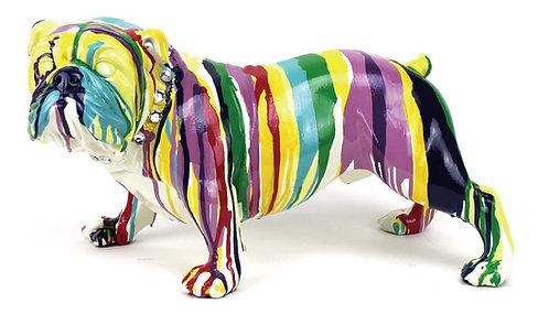Multicolour Bulldog
