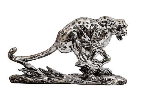 Running Leopard