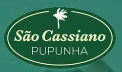 Palmito pupunha São Cassiano