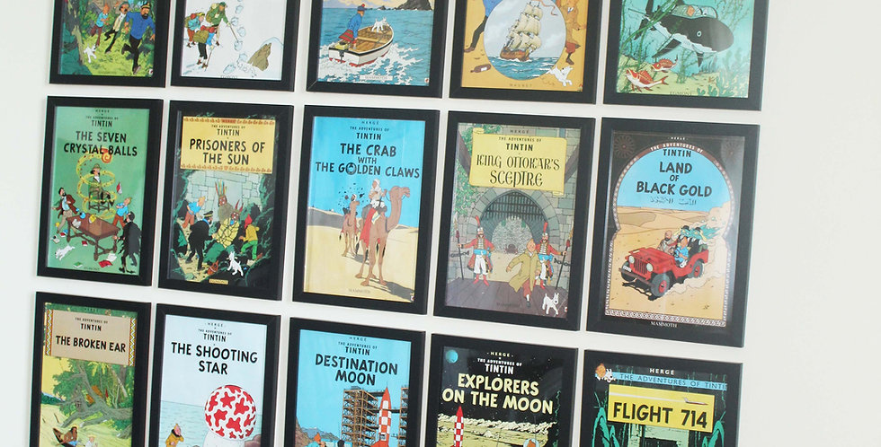 Tintin pictures