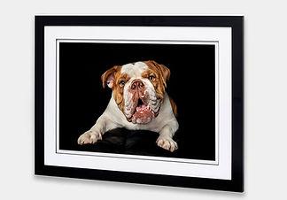 Frame Floated Straight Edge 30mm Black 5cm White with Black Core Matt 1.jpg