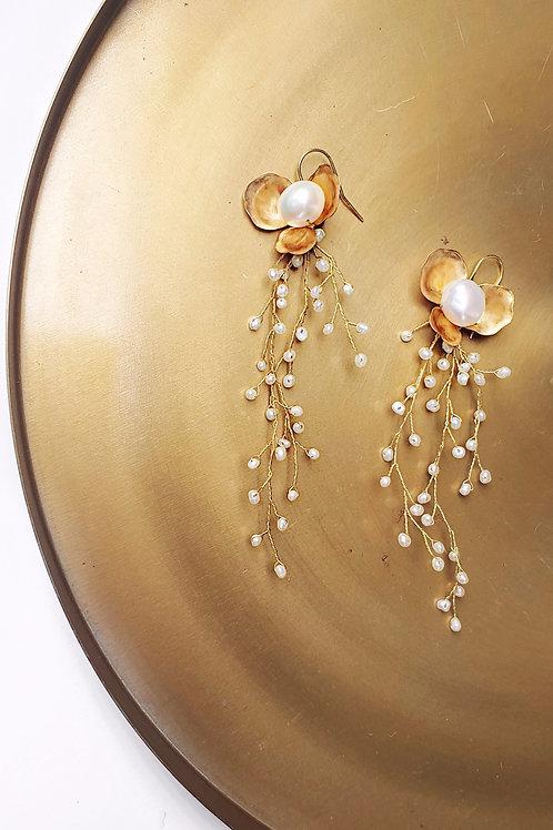 Kolczyki ROBIN z perłami