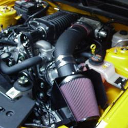 Mustang 4.jpg