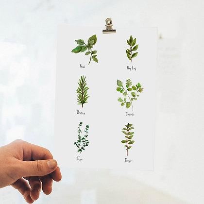 Kitchen Herb Artwork