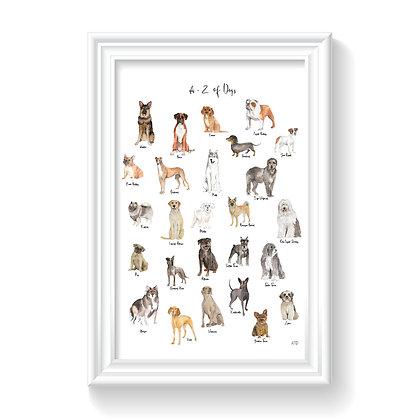 A-Z Dog Illustration