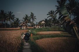 Ready to take off, Bali - 2015