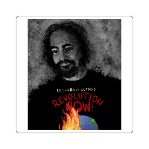 Peter Joseph Revolution Now