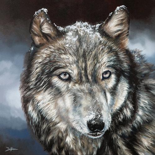 Winter Wolf 20x20