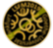 LSFM2019_LogoV2.png