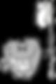 dental spa.png