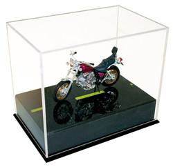 Motor bike w-case.jpg