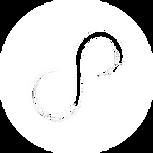 PS_logo_white.png