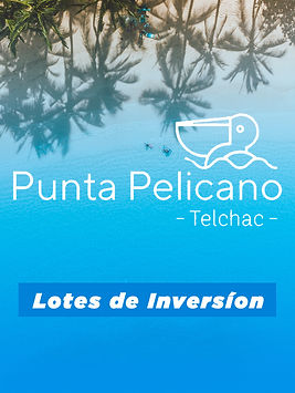 banner Punta Pelicano.jpg