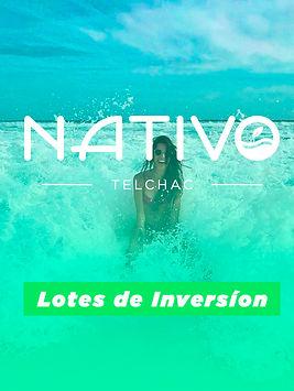 banner Nativo.jpg